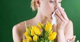 Как выявить и лечить аллергию?