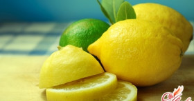 Лимон комнатный: уход за экзотическим растением