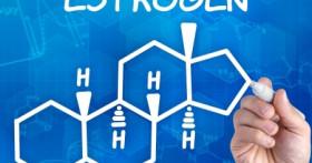 Как повысить в организме эстрогены?