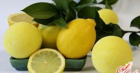 Домашний лимон: уход, пересадка и размножение