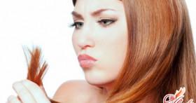 Рецепты масок для волос в домашних условиях от сечения