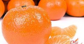 Домашняя оранжерея, или как вырастить мандарин из косточки