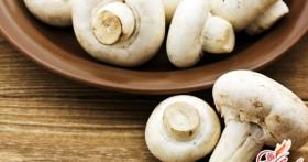 Как высушить и приготовить грибы