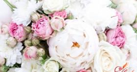 ТОП-7 самых романтичных цветов для девушки
