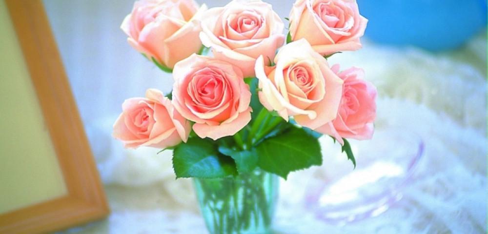 Как сохранить срезанные розы. Как продлить жизнь розам