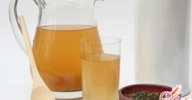 Как вырастить чайный гриб самостоятельно?