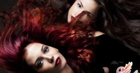 Шварцкопф краска для волос Natural Easy: палитра оттенков