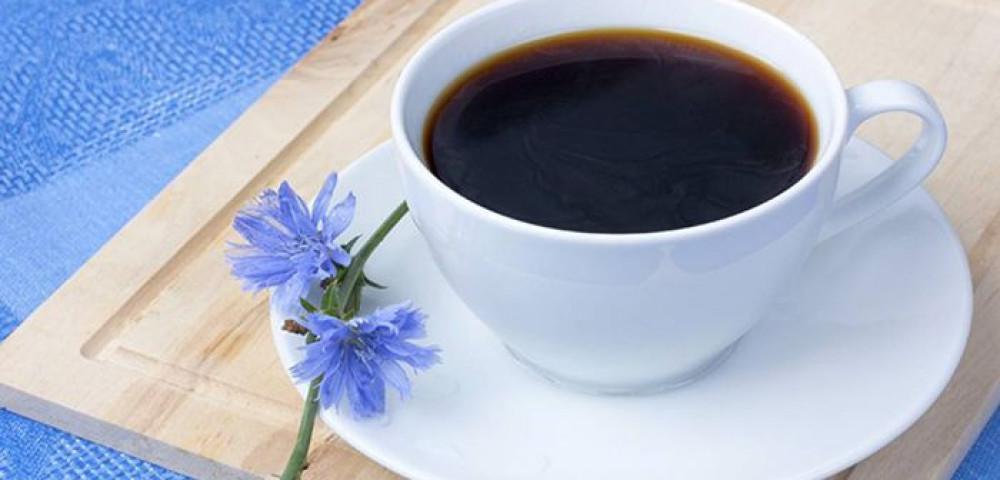 Цикорий при панкреатите для поджелудочной железы, можно ли пить растворимый напиток при хроническом холецистите?