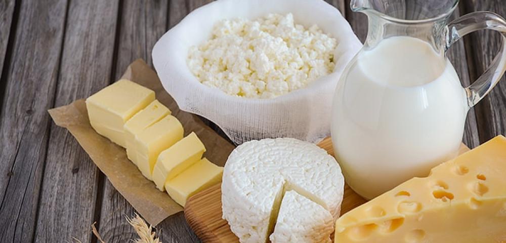 Почему от молока понос у взрослого. Почему у взрослого понос от молока и других молочных продуктов