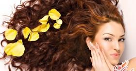 Лучшие рецепты домашних масок для жирных волос
