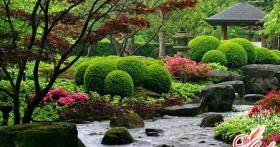 Красивый сад и огород своими руками
