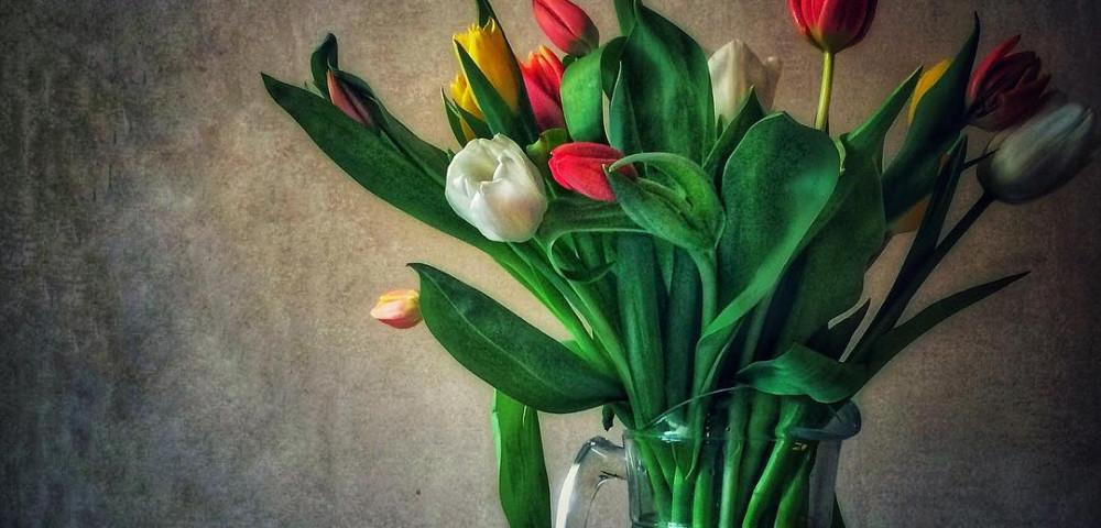 Как сохранить тюльпаны в вазе подольше и что добавить в воду видео