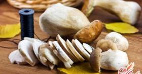 Сушеные грибы – ароматный, вкусный и полезный запас на зиму