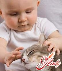 новорожденный ребенок и кошка