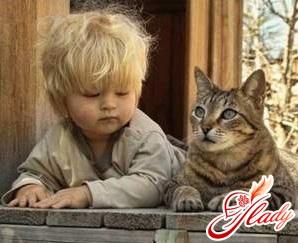кошка и маленький ребенок