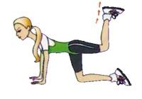 ефективні вправи для сідниць і стегон