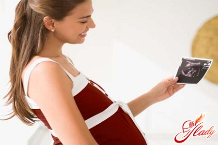 Беременность 17 неделя