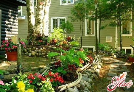 зимний сад своими руками