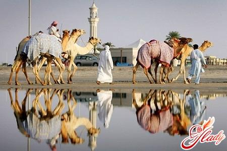 объединенные арабские эмираты путешествие