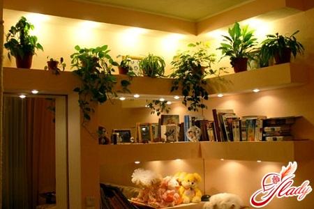Ампельные растения в интерьере
