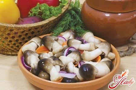 рецепты маринования грибов вешенки