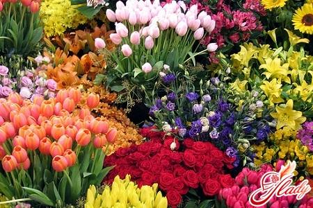 создание цветников на участке