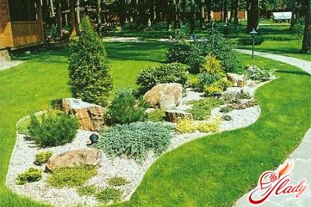 как посадить декоративный огород на даче