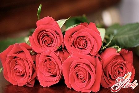 лучшие морозостойкие сорта роз