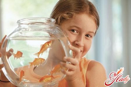 алгоритм ухода за рыбками для младших дошкольников