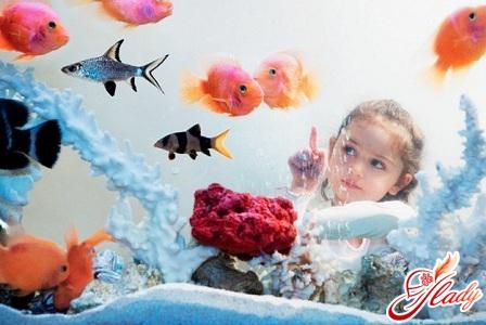 инструкция как ухаживать за рыбами в аквариуме