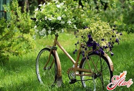 красивый сад своими руками