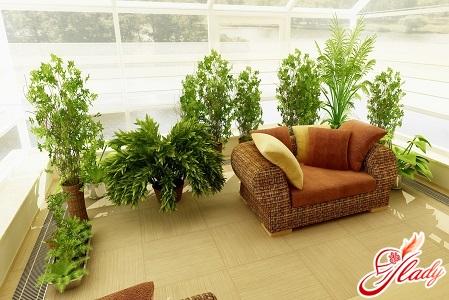 красивый зимний сад в квартире