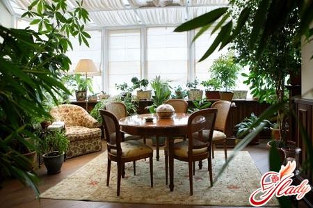 Дизайн квартиры с зимним садом