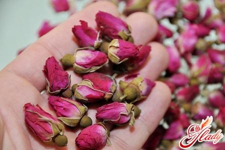 комнатная роза как ухаживать и почему вянут