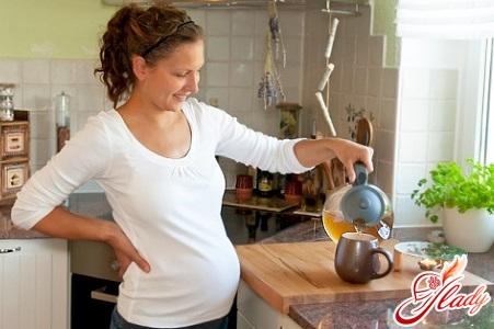 мята для беременных