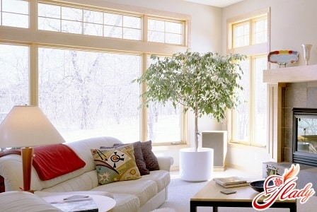 Как правильно расположить дом по фен-шуй?