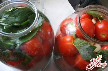 вкусные соленые помидоры