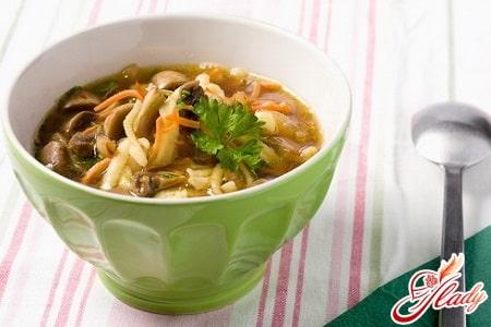 куриный суп на грибном бульоне