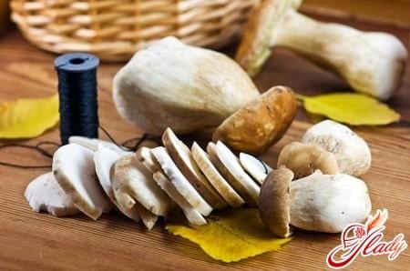 сушка грибов разными способами