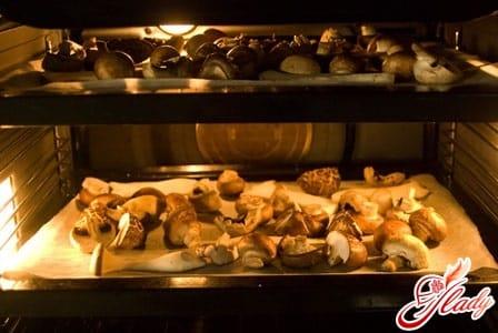 правильная сушка грибов в духовке